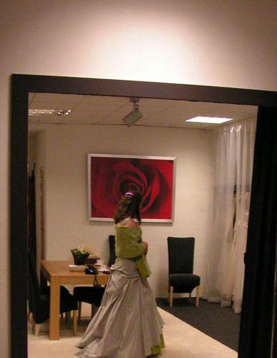 libelle spiegel paars (1)